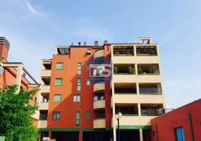 Monza MB, Viale Ugo Foscolo 9, 1 Camera da Letto Bedrooms, ,1 BagnoBathrooms,Appartamento,Affitto,MB,1119